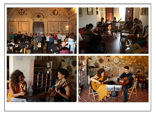 Volterra Guitar Institute Project