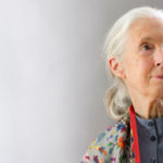 The Dreamer, Jane Goodall