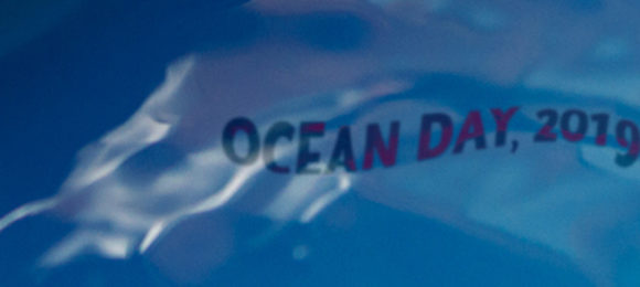"A ""Tribute"" to 2019 Ocean Day"