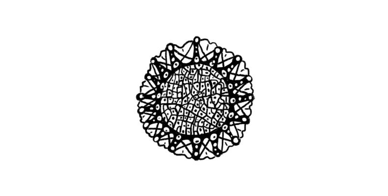 """Ernst Haeckel: The Great Nature """"Plagiator"""""""